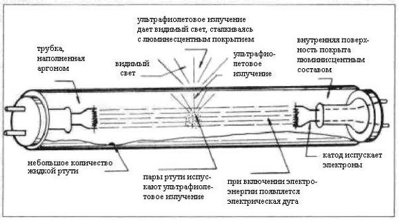 Схема ЛЛ
