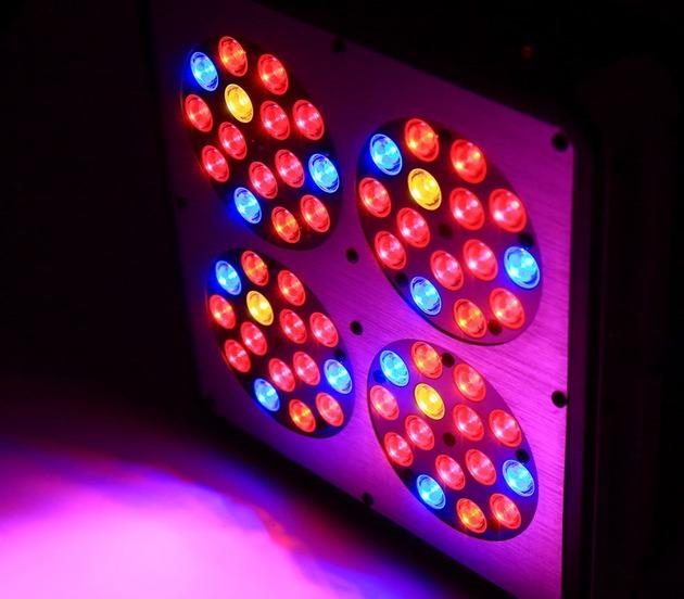 11-svetilnik-dlya-rastenij